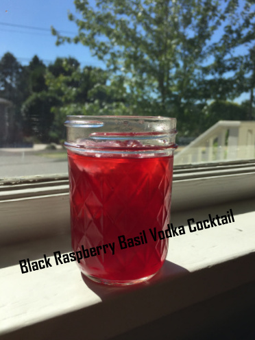 black raspberry basil vodka cocktail